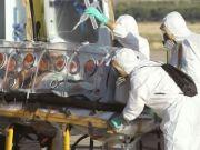 ebola, virus1111