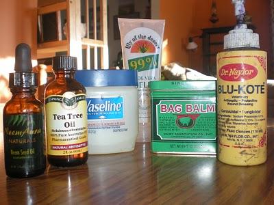 medicine cattle